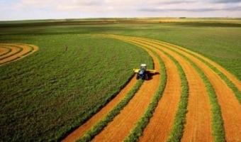 Сведения о сельскохозяйственных угодьях
