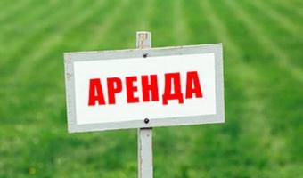 Как взять участок земли в аренду у государства?