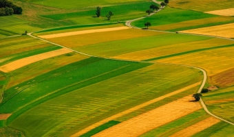 Что такое земли рекреационного назначения?
