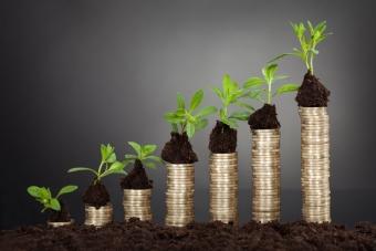Что является налоговой базой по земельному налогу?