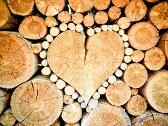 Кому положены бесплатные дрова от государства? Как получить?